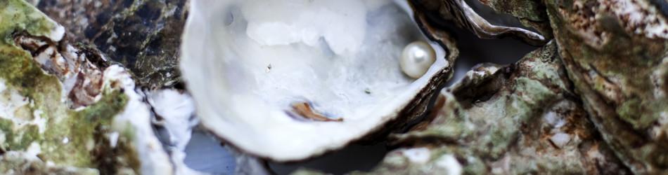 perle d'huître
